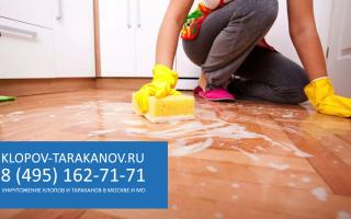 Дезинфекция от тараканов (обработка помещений): уничтожение дезинсекцией против тараканов в квартирах: отзывы