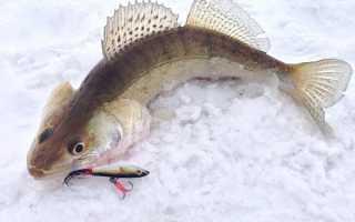 Бокоплав для зимней рыбалки — эффективная блесна на хищную рыбу