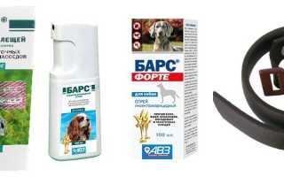 БАРС от клещей для собак: капли, спрей, ошейник — отзывы и инструкция