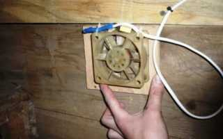 Вентиляция в курятнике: как правильно выбрать тип и схему
