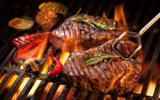 Какой выбрать гриль: обзор и сравнение грилей для ресторана, кафе, фастфуда