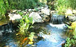 Фильтр для очистки садового пруда своими руками — фото и видео