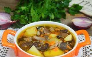 Как приготовить суп из замороженных опят — рецепты