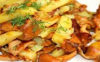 Как пожарить картошку с лисичками на сковороде — пошаговый рецепт