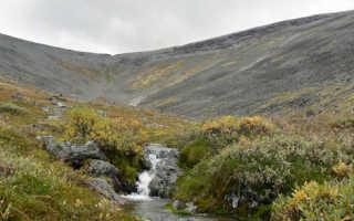 Флора, фауна и лучшие достопримечательности Лапландского заповедника