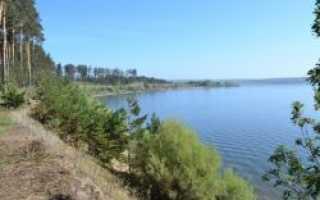 Дикарями, в домиках и номерах: где отдохнуть в Новосибирске летом