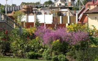 Садовый участок в стиле «Новая волна»