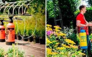 Как выбрать садовый опрыскиватель на дачу: критерии выбора и популярные модели