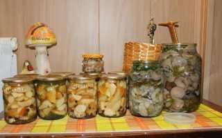 Как солить грибы на зиму в банках: простые рецепты в домашних условиях с фото