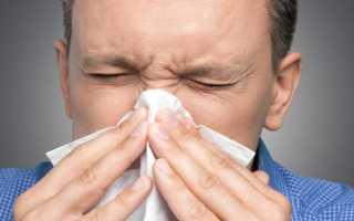 Эффективное и быстрое лечение насморка алоэ в домашних условиях