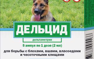 Дельцид, 2 мл (для собак)