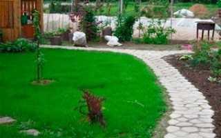 Садовая дорожка своими руками при помощи формы