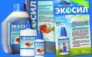 Экосил — инструкция по применению, отзывы о препарате для растений