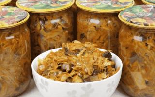Солянка из капусты с грибами на зиму — 7 рецептов