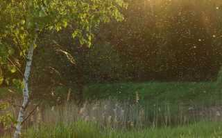 Защита от комаров — средства от укуса мошек и слепней на открытом воздухе