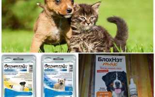 Средства от комаров для собак
