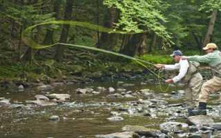 Ловля нахлыстом для начинающих: правильная снасть, мушки и техника ловли