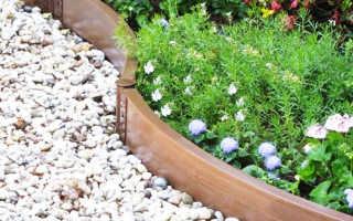 Садовые пластиковые бордюры: виды и особенности применения