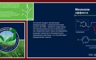 Инструкция по применению инсектицида «Конфидор»