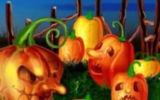 Как вырезать тыкву на Хэллоуин правильно: фото и видео на русском