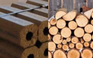 Топливные брикеты или дрова что лучше для бани