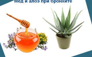 Алоэ при бронхите, лечение от кашля с мёдом рецепты лекарств
