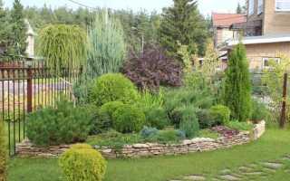 Миксбордеры в ландшафтном дизайне: фото, схемы, из цветов, из хвойников, из кустарников и хвойников
