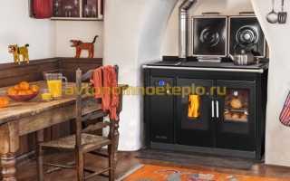 Твердотопливный котел с варочной поверхностью для готовки