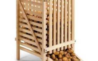 Температура хранения картофеля: какие условия овощ может выдерживать долго, а при скольких градусах он замерзает,