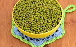 Виды бобов и их полезные свойства: белые и зеленые бобы — маш, мунг, нута